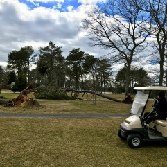 Steven Assessing Damage - Falmouth CC
